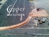 70-copper-seamless-round-valley-roof1